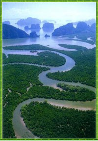 A river in the Andaman sea - Krabi hotel area.